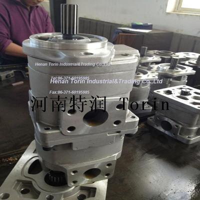 Double Gear Pump 3