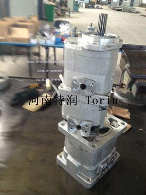Double Gear Pump 4