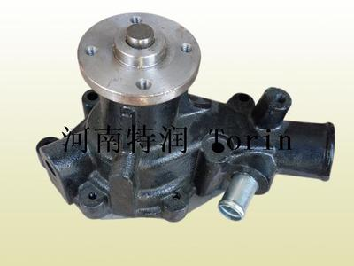 4BD1 Water pump